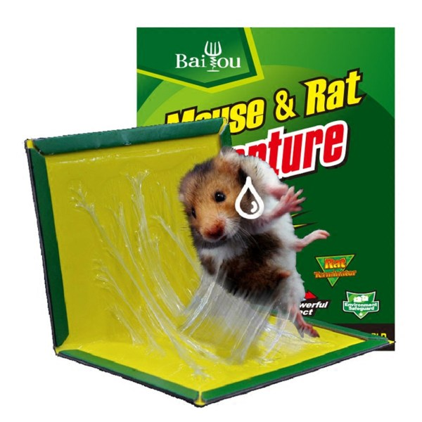 Buy Mouse Catcher Glue Board