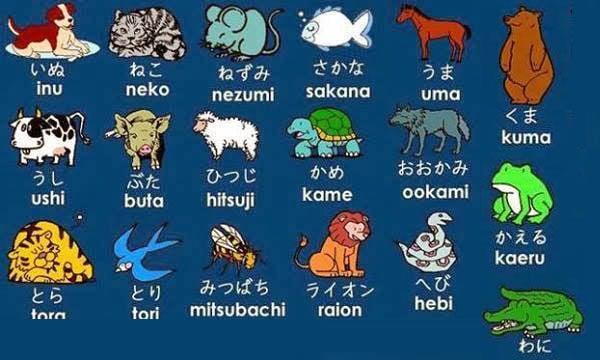 Animais em japonês – Doubutsu [動物]