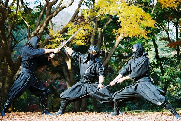 Provérbios Japoneses - Lista de frases Ninja - Kotowaza