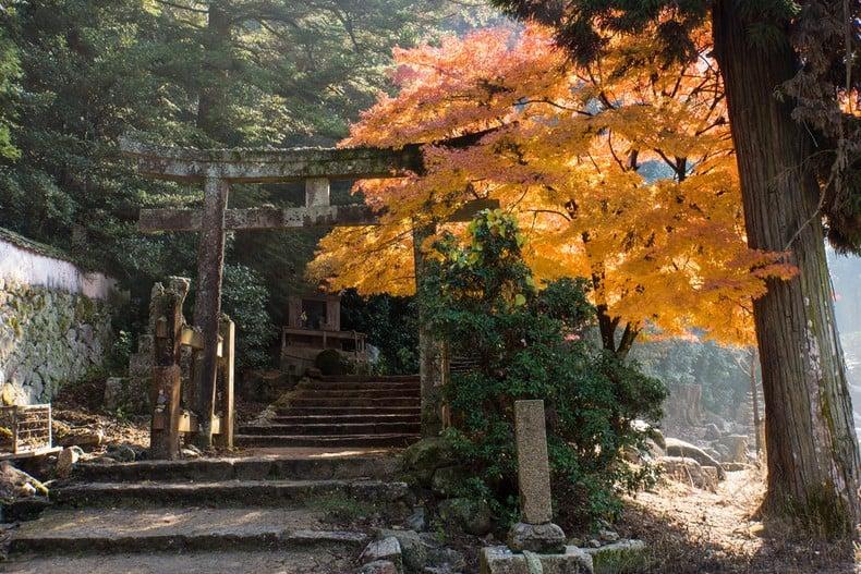 Aki - temporada de otoño en japón