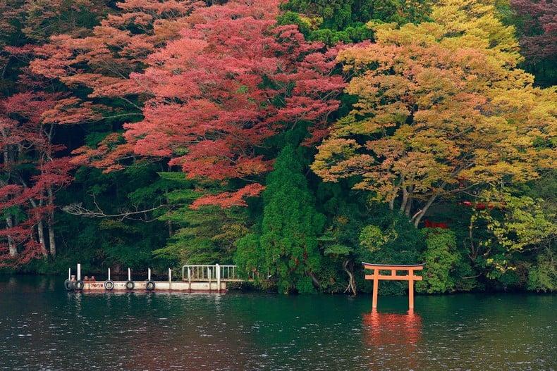 Aprecie as folhas do outono no Japão! - folhas outono 6
