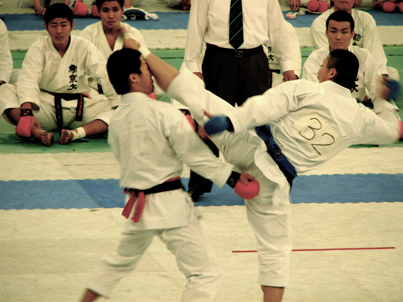 The 10 japanese martial arts + karate list(do) [空手道]- the art of empty hands