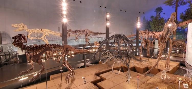 O museu dos dinossauros de Fukui - Japão