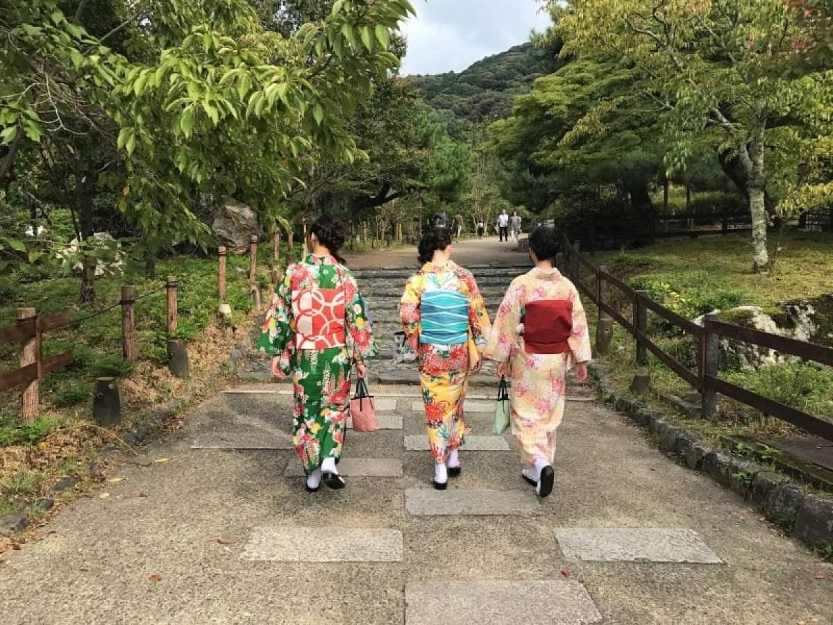 Ikigai - O significado e propósito da vida em japonês
