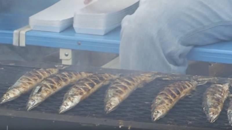 Os 10 Tipos de peixes mais consumidos no Japão - sanma 3
