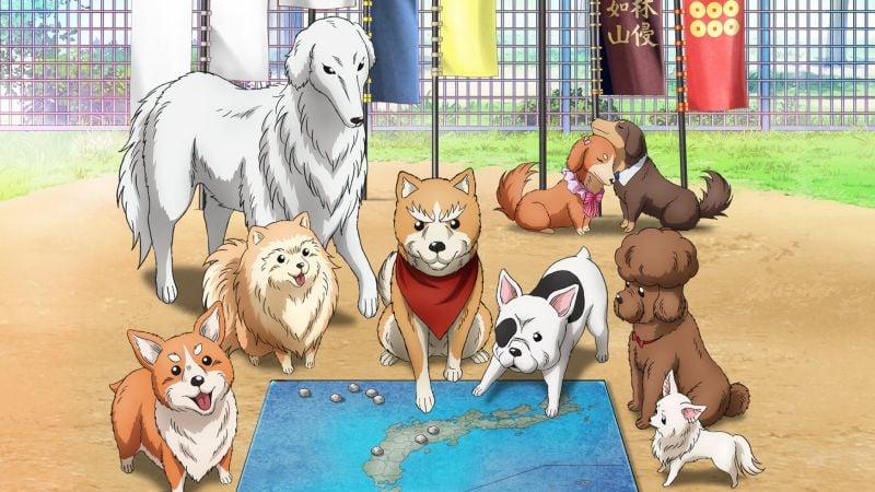 Animes com animais, cachorros e gatos - animaes caes anime 5