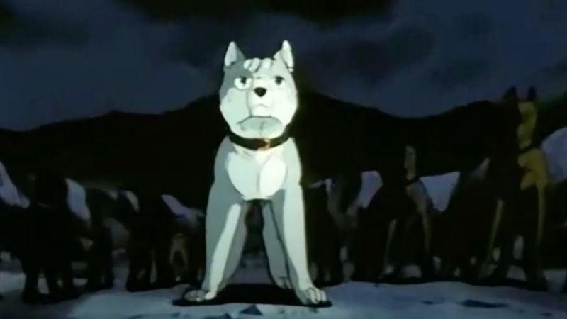 Animes com animais, cachorros e gatos - ginga 4