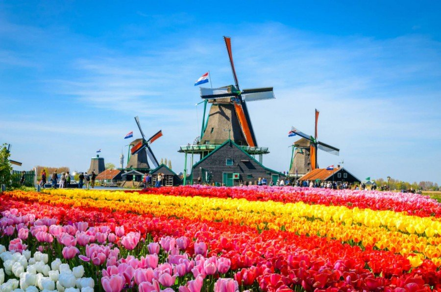 Palavras holandesas no idioma japonês