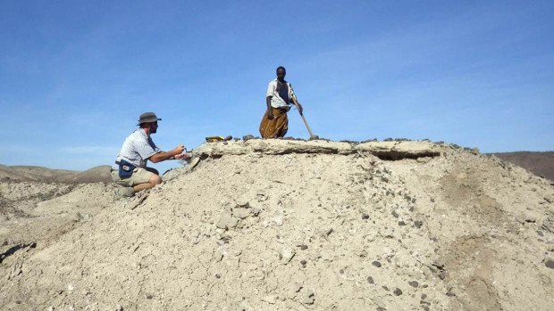 Ancient jawbone in Ethiopia points to unknown human species