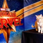 Captain Marvel breaking box office records