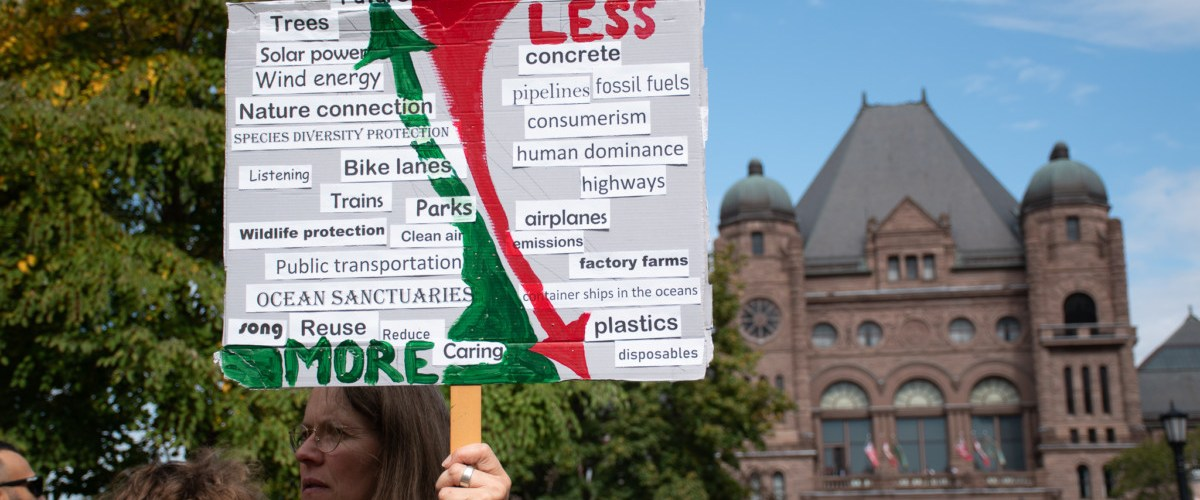 The 2019 Global Climate Strike takes over Queen's Park