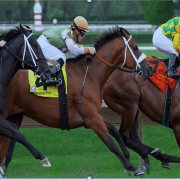 Christian Holmes:          Staying the trip – a view into horse racing's future
