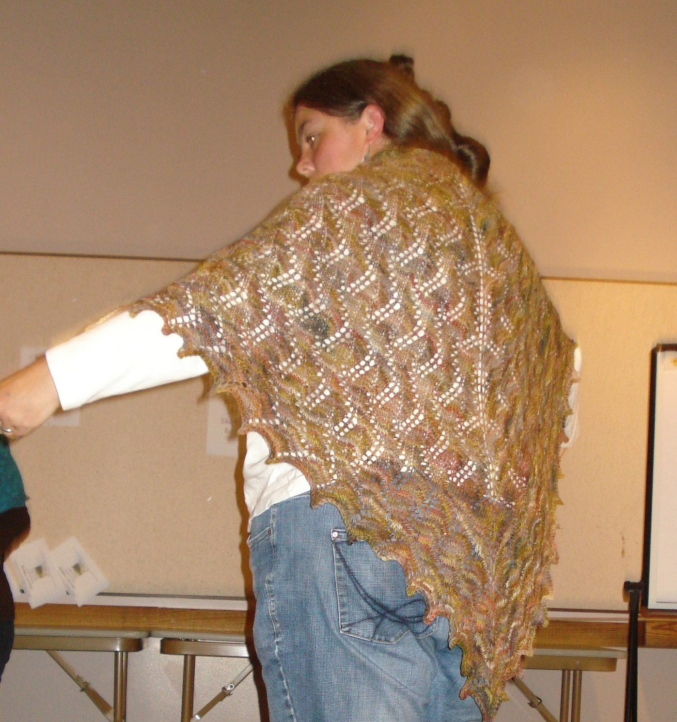 Ellen's shawl - The Luna Moth