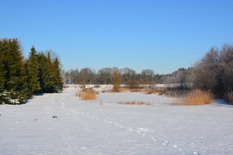 Søen ved Kunstnergården lige ved Skelbæklund
