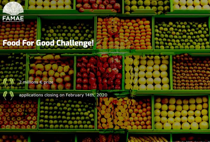 FAMAE-Food For Good Challenge