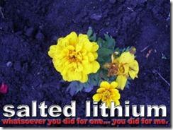 SaltedLithium