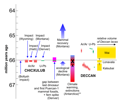 small resolution of end cretaceous rock dates and extinction record