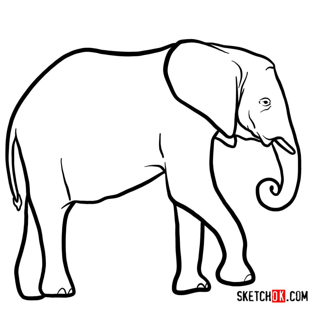 How to draw an Elephant side view
