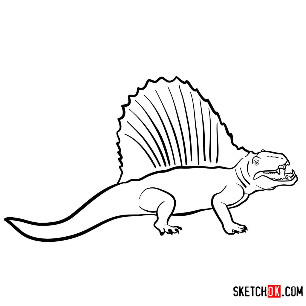 How to draw a Dimetrodon