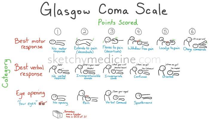 glasgow coma scale gcs
