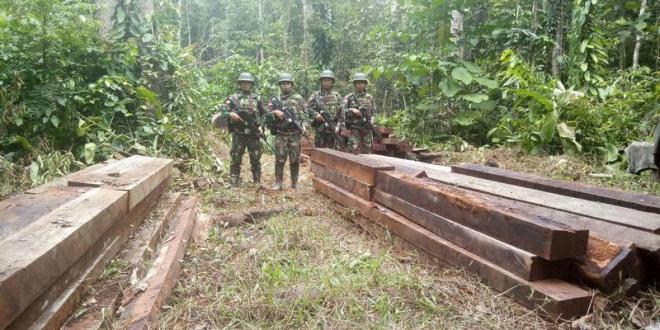Lakukan Patroli Keamanan, Satgas Pamtas Yonif PR 328 Kostrad Amankan Ratusan Batang Kayu Illegal