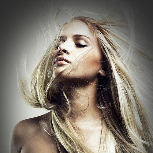 Stephanie Kerr Quality Hair Extensions Shrinkies Dinkies