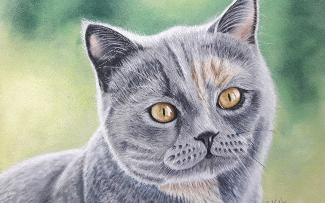 Gracie Cat Portrait Painting