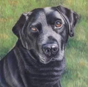 Bobby-dog-portrait-in-soft-pastel