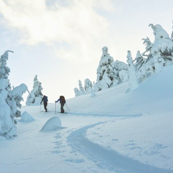 Baldy Mountain Resort Oliver BC Revitalize