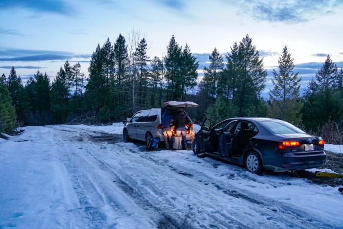 A 2wd rental car with summer tyres doesn't go too far on uncleared forestry roads