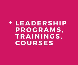 Skidmore Consulting - Leadership Programs
