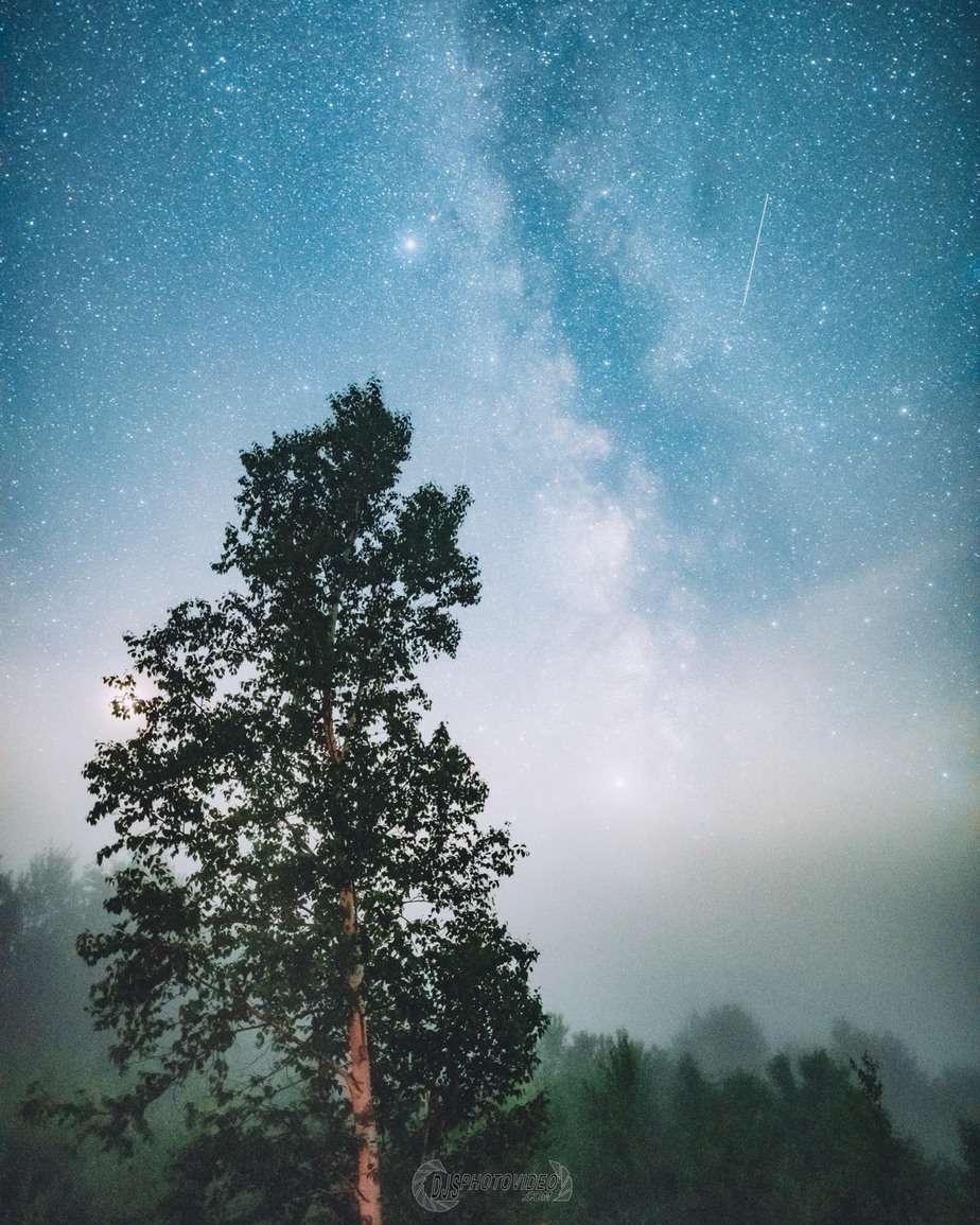 Daniel Stein astrophotography