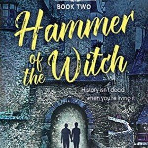 Book Review: Hammer of the Witch by Dakota Chase