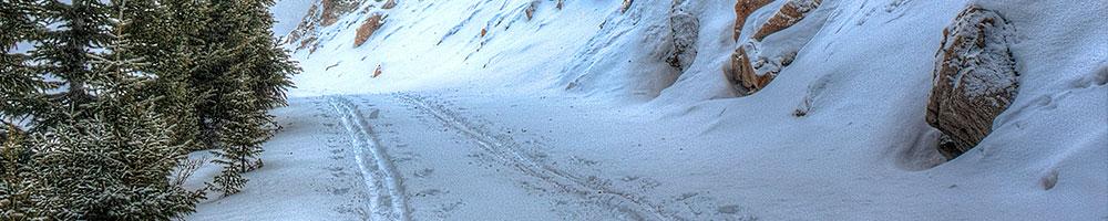 Nordic Skiing App Survey