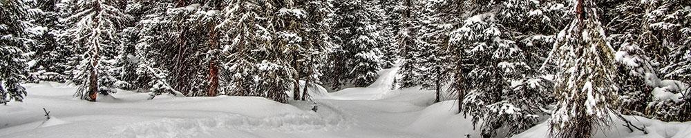 Escape the Crowds and Ski Grand County's Free Trails