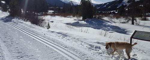 Abundant Nordic Skiing in Fraser & Winter Park
