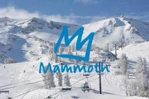 mammoth FI