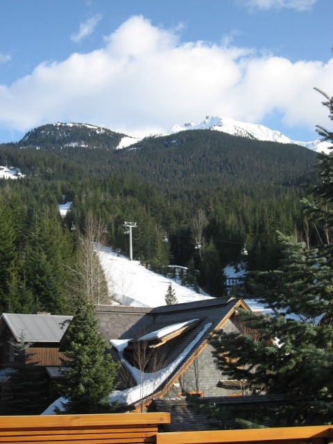 5 Bedroom Snowridge Whistler Ski In Ski Out (18)