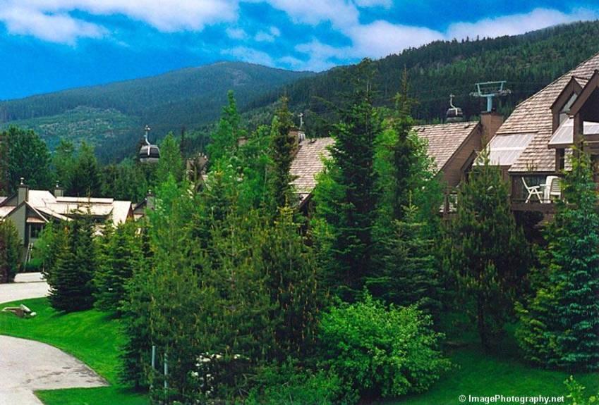 Accommodation Whistler Cedar Ridge Ski In Ski Out  (18)