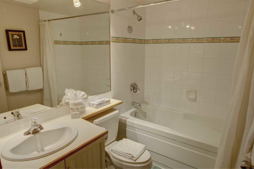 Aspens 1 Bedroom Unit 415 BATH