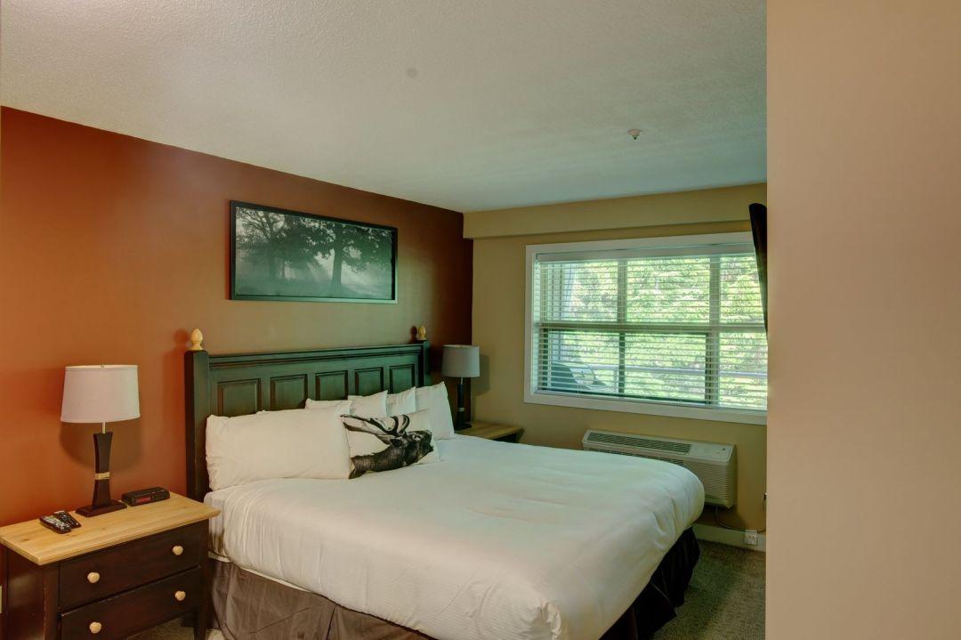 Aspens 1 Bedroom Unit 418 BR