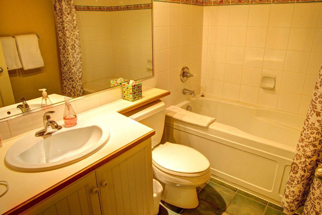 Aspens 1 Bedroom Unit 461 BATH