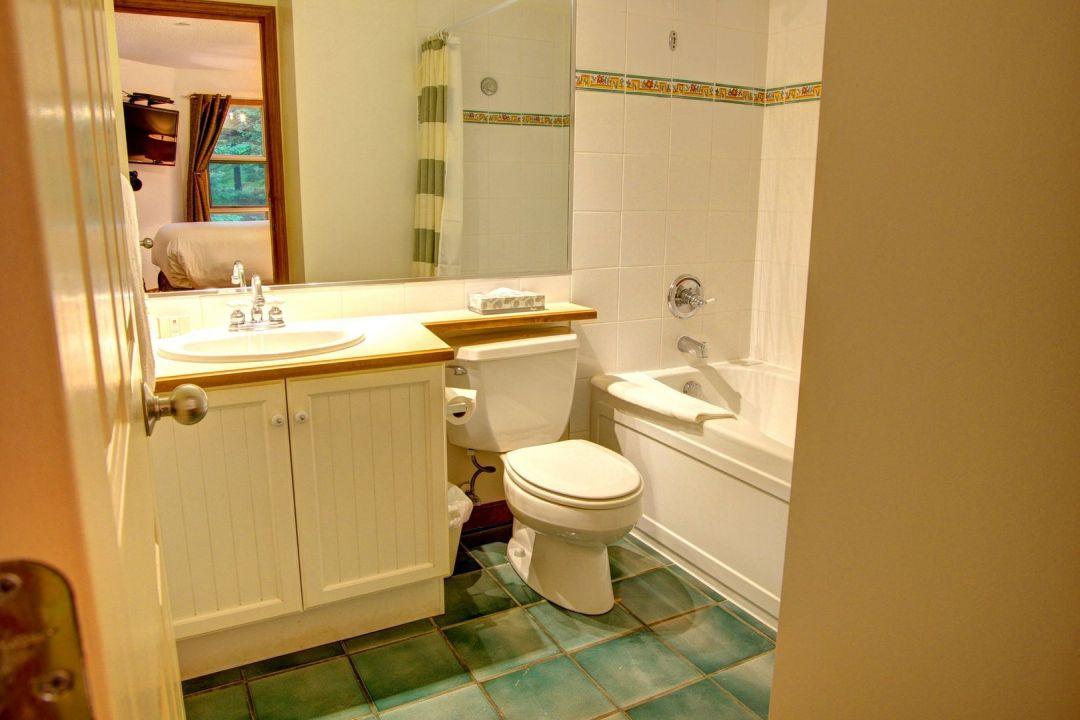 Aspens 2 Bedroom Unit 352 BATH