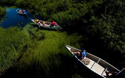 Canoe Tours Whistler