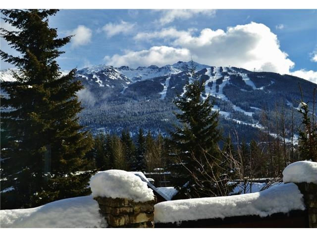 Whistler 6 Bedroom Rental Home - Treetop (1)