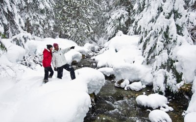 Canadian Wilderness Whistler Snowshoe Tours