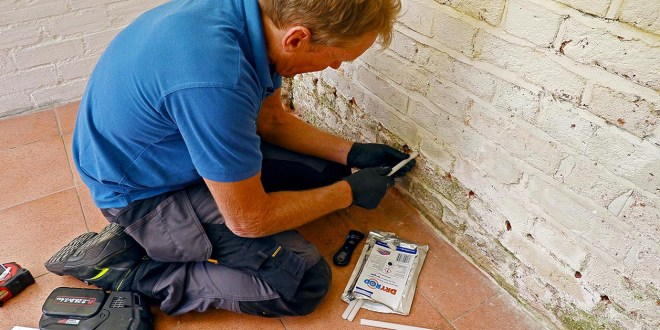 No Such Thing as Rising Damp