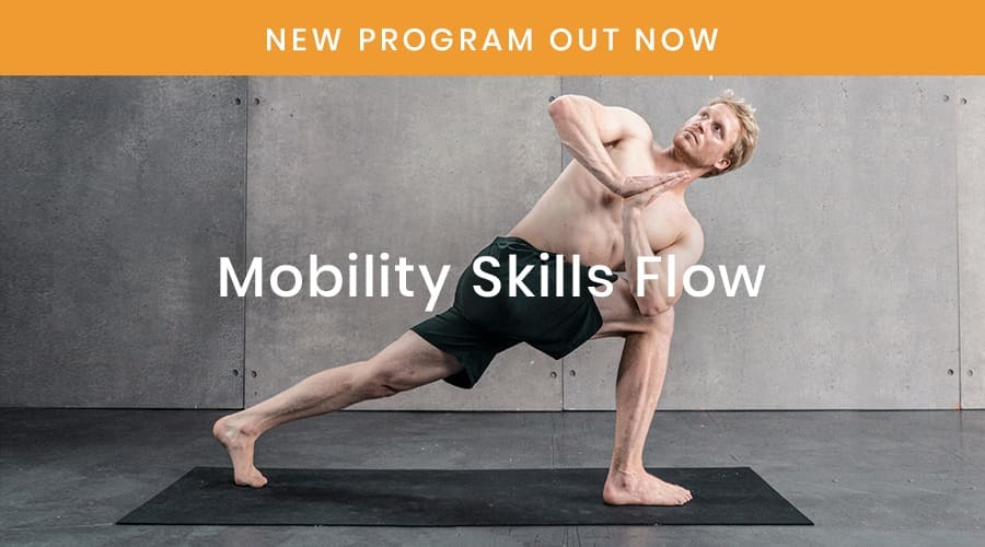 Mobility Skills Flow Man doing lunge