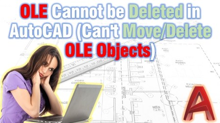 OLE Cannot be Deleted in AutoCAD (Can't Move/Delete OLE Objects) AutoCAD Tips