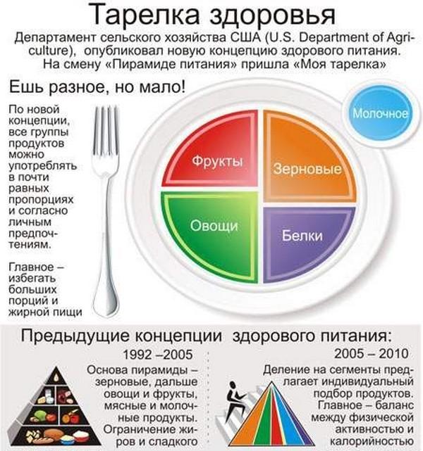 Как действует метод тарелки для похудения Что такое правило тарелки Диета одной тарелки